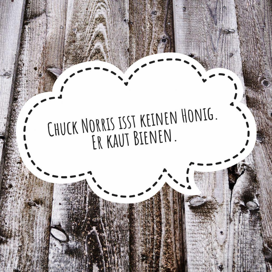 Chuck Norris Die Besten Witze Und Sprüche Kreativ Blog Diy