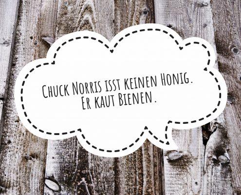 Chuck Norris - die besten Witze und Sprüche