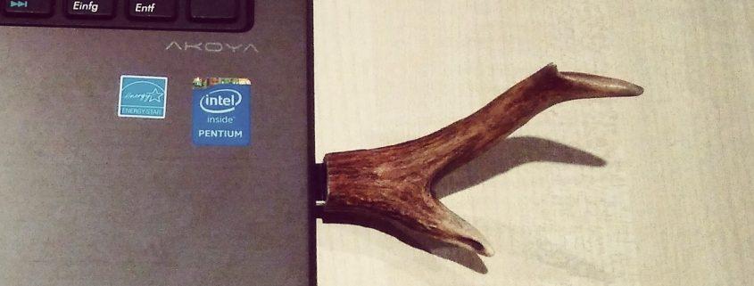 DIY Hirsch USB Stick