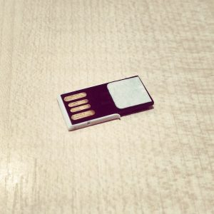 DIY Hirsch USB Stick