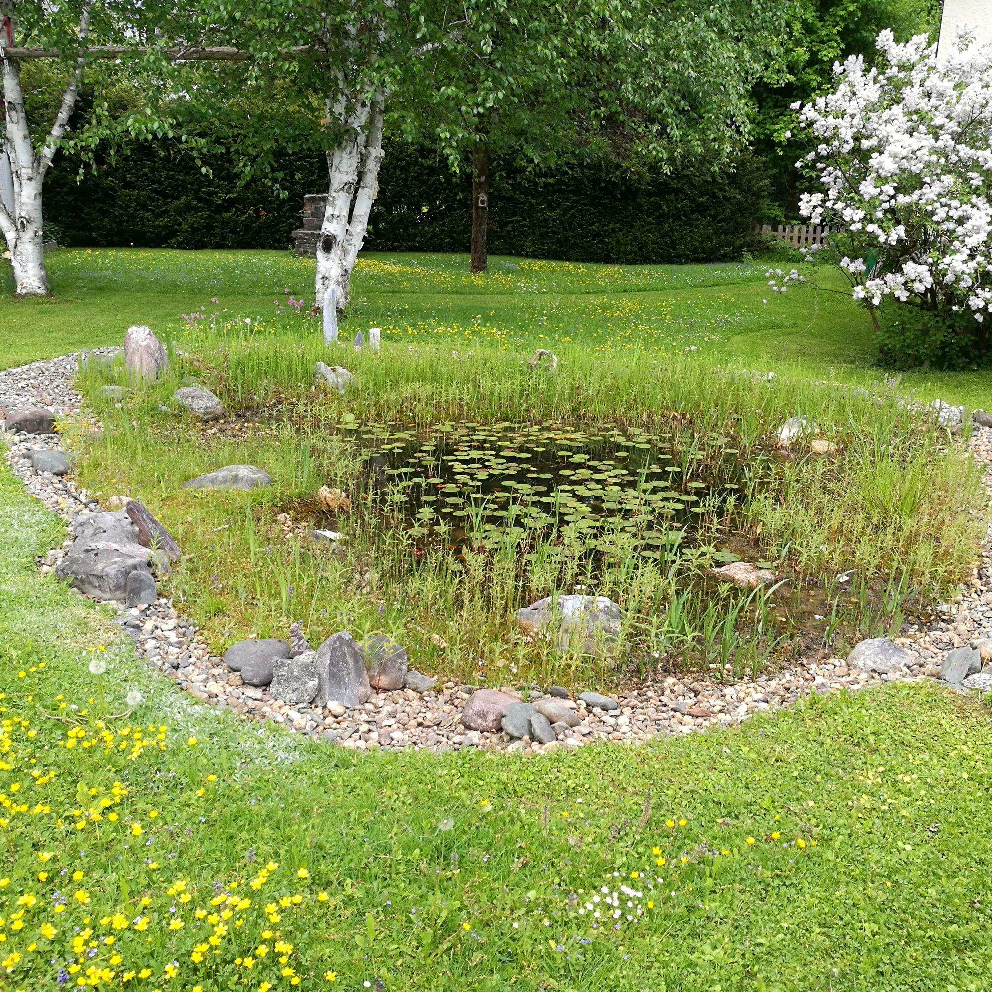 Gartenteich aus altem reifen kreativ blog diy gadgets for Teich aus traktorreifen