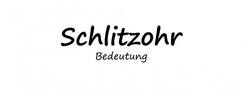 Schlitzohr - Bedeutung
