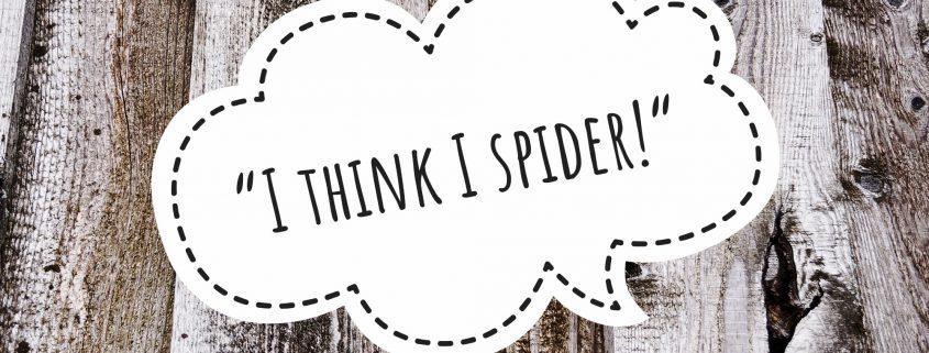 I think I spider - denglische Sprüche