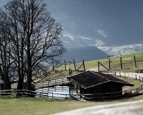 Ausblick vom Wildpark Aurach