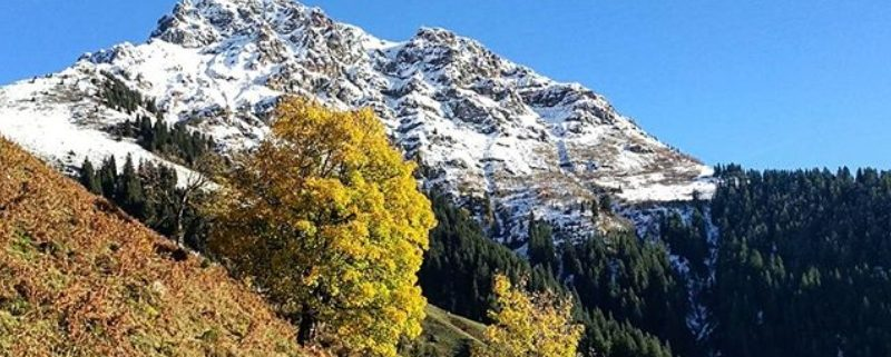Erster Schnee am Kitzbüheler Horn in Oberndorf