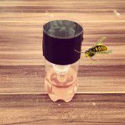 Wespenfalle selbstgemacht