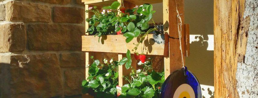 DIY Erdbeer Garten aus Paletten