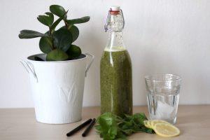 Kiwi Minze Sirup für Limonade (c) Nutrition und Passion