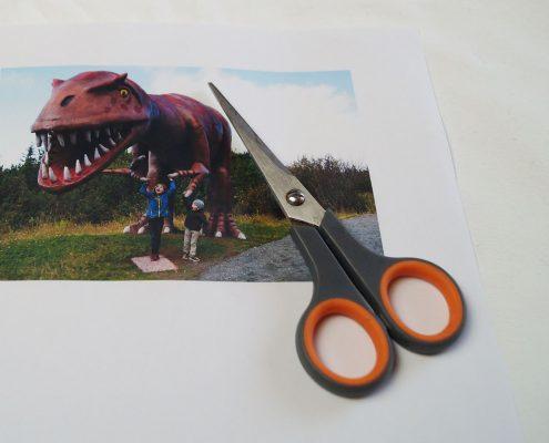 Perfekte Bilder mit der Druckerpatrone von Tonerpartner.de