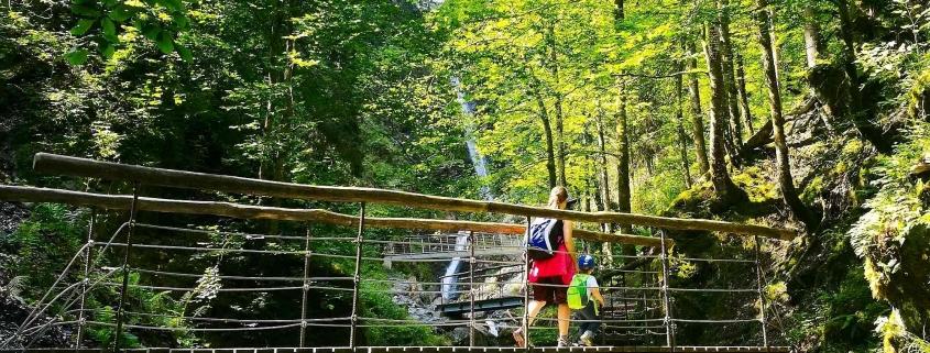 Eifersbacher Wasserfall Urwald In St Johann In Tirol Kreativ