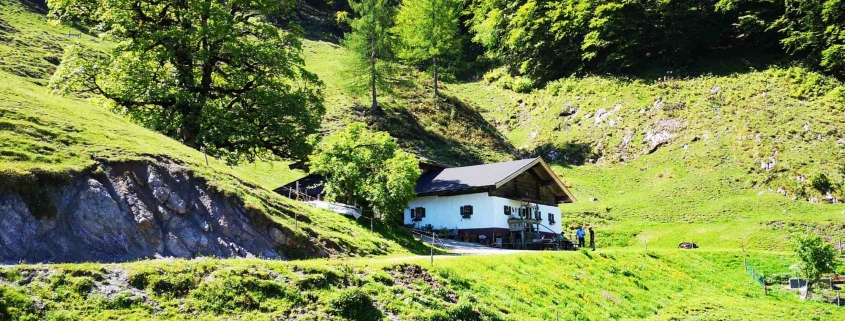 Bacheralm - Kräuteralm mit Kräutergarten in Kirchdorf in Tirol