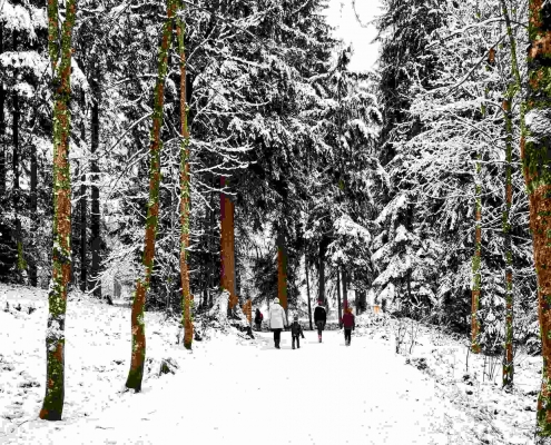 Schwarzsee Spaziergang in Kitzbühel