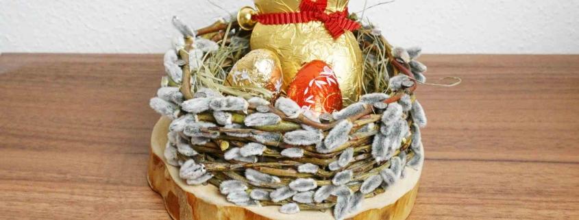 Palmkätzchen Nest für Ostern